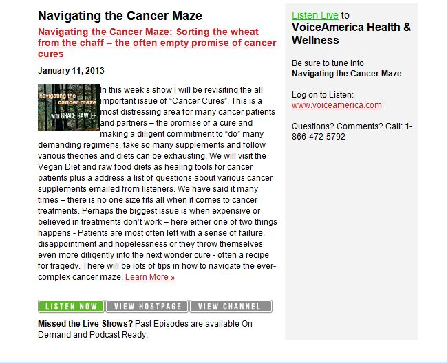 Navigating the Cancer Maze Voice America Grace Gawler