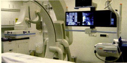 Prof Vogl TACE liver cancer